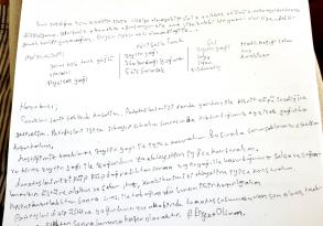 SAÜ Öğrencisi Final Kâğıdına Yemek Tarifi Yazdı