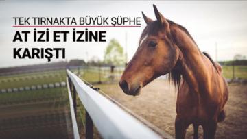 Bakanlık Raporuna Göre Sakarya'da At ve Eşek Eti Yemişiz